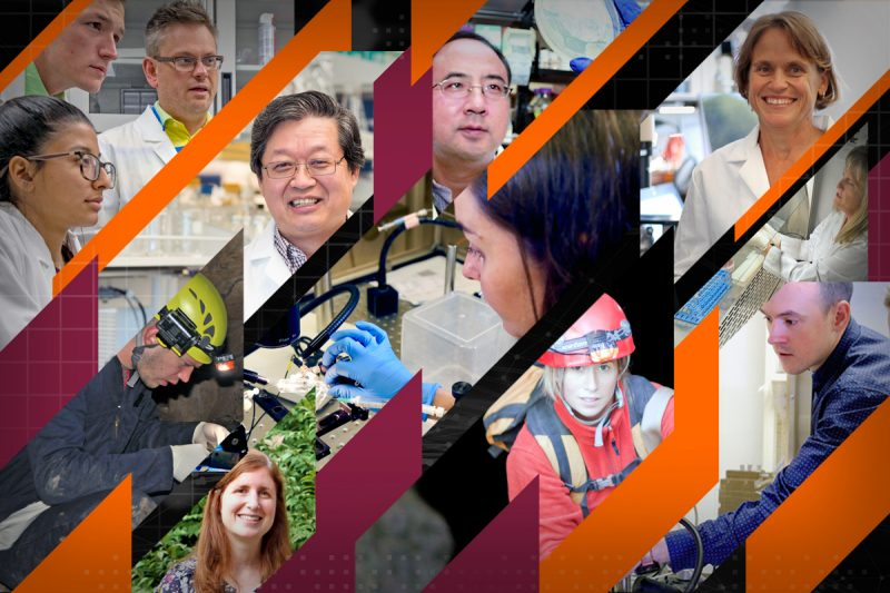 Center for Emerging, Zoonotic, and Arthropod-borne Pathogens affiliated faculty photo collage